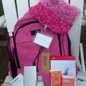 Womens March Napa Valley online auction